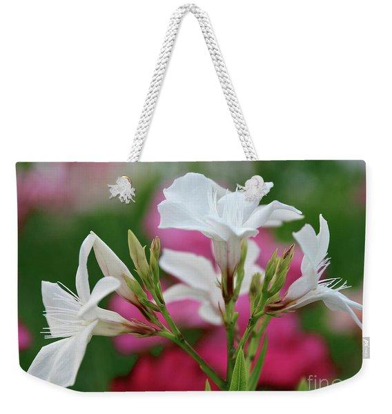 Oleander Casablanca 1 Weekender Tote Bag