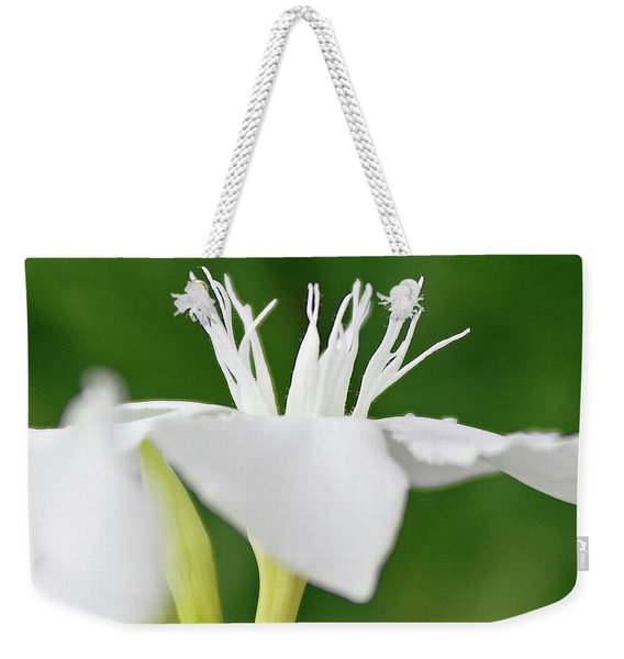 Oleander Ed Barr 2 Weekender Tote Bag