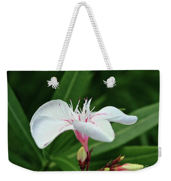 Oleander Harriet Newding  1 Weekender Tote Bag