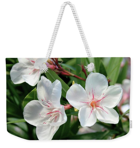 Oleander Harriet Newding 3 Weekender Tote Bag