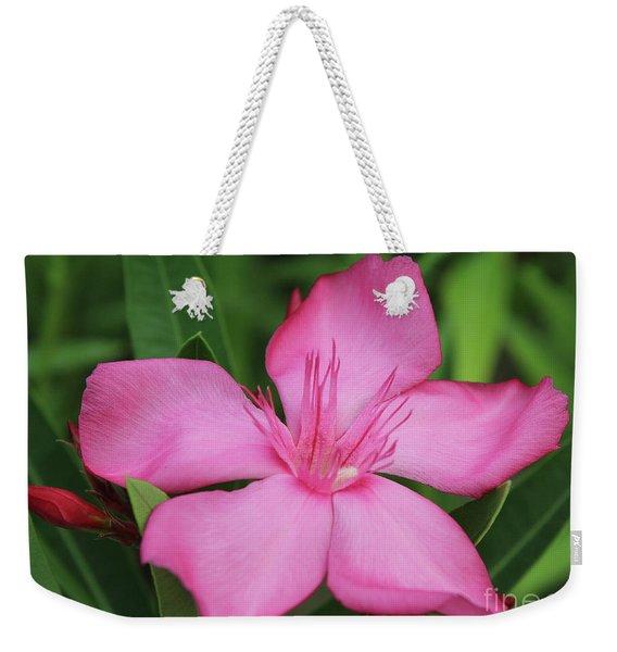 Oleander Professor Parlatore 2 Weekender Tote Bag