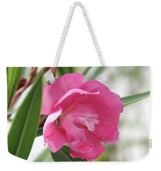 Oleander Splendens Giganteum 3 Weekender Tote Bag