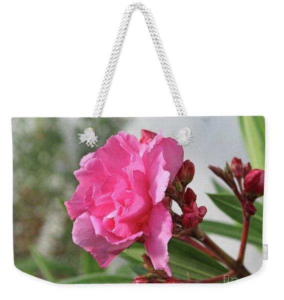Oleander Splendens Giganteum 4 Weekender Tote Bag