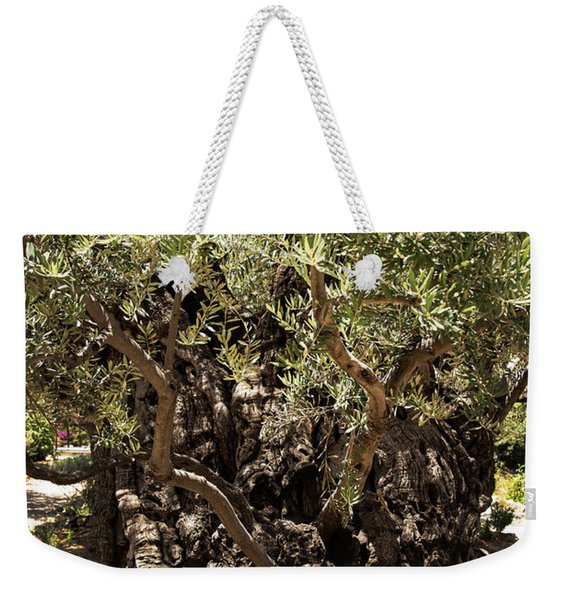 Weekender Tote Bag featuring the photograph Olive Tree by Mae Wertz