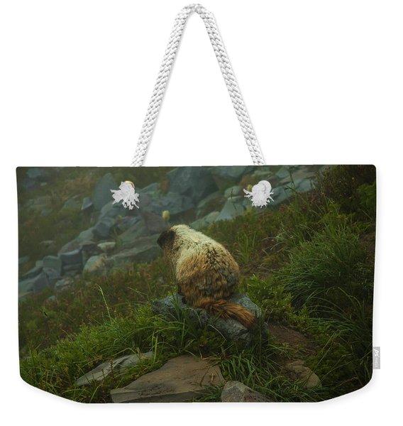 On Lookout Weekender Tote Bag