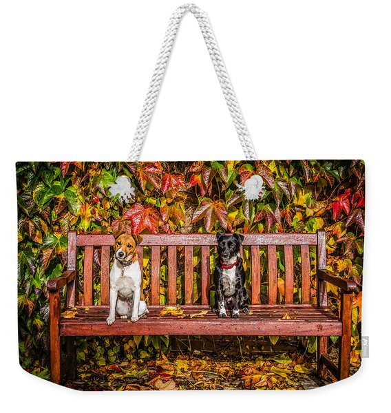 Weekender Tote Bag featuring the photograph On The Bench by Nick Bywater