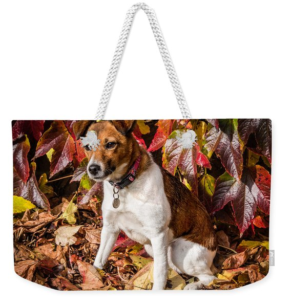 Weekender Tote Bag featuring the photograph On The Leaves by Nick Bywater