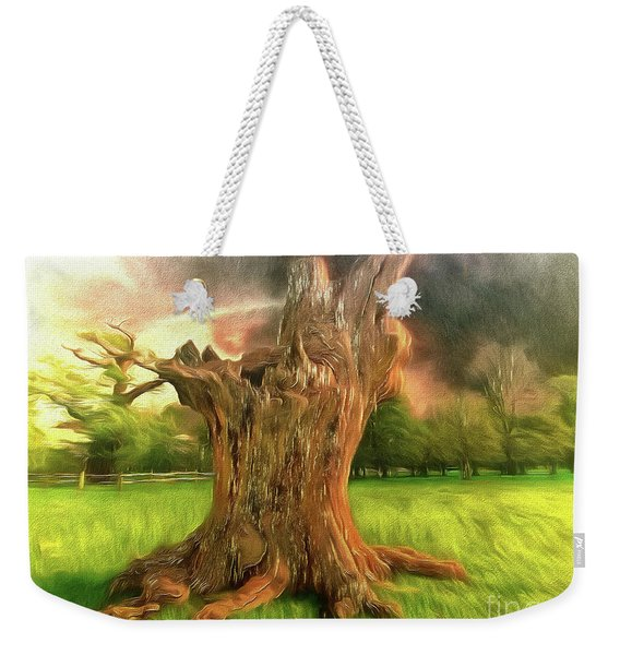 Once I Touched The Stars Weekender Tote Bag