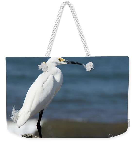 One Classy Chic Wildlife Art By Kaylyn Franks Weekender Tote Bag