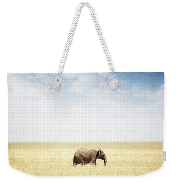 One Elephant Walking In Grass In Africa Weekender Tote Bag