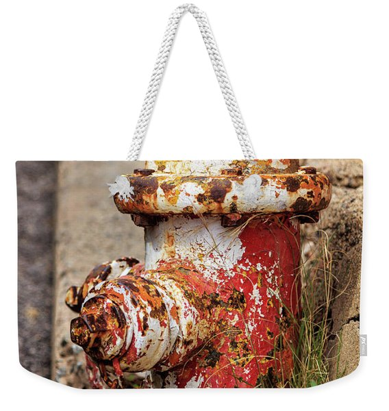 One Hydrant - Too Many Dogs Weekender Tote Bag