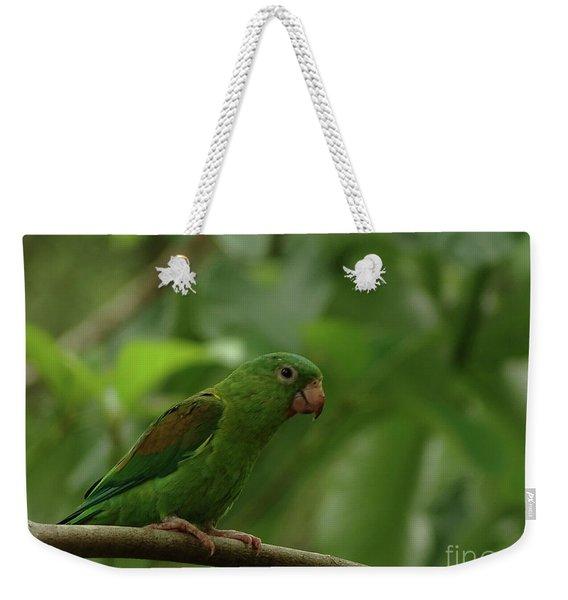Orange-chinned Parakeet  Weekender Tote Bag