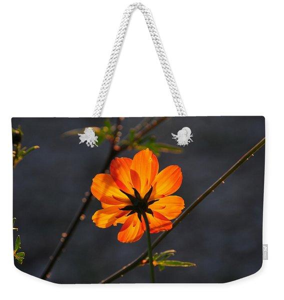 Orange Cosmo Weekender Tote Bag
