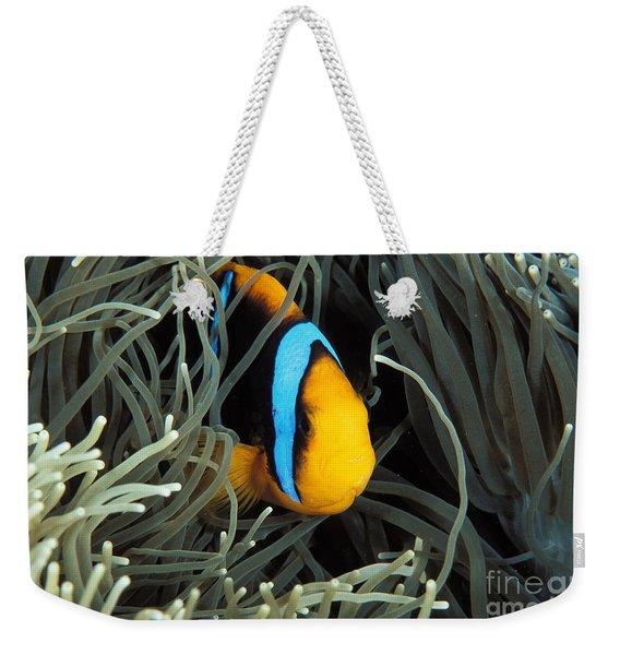 Orange-fin Anemone Weekender Tote Bag