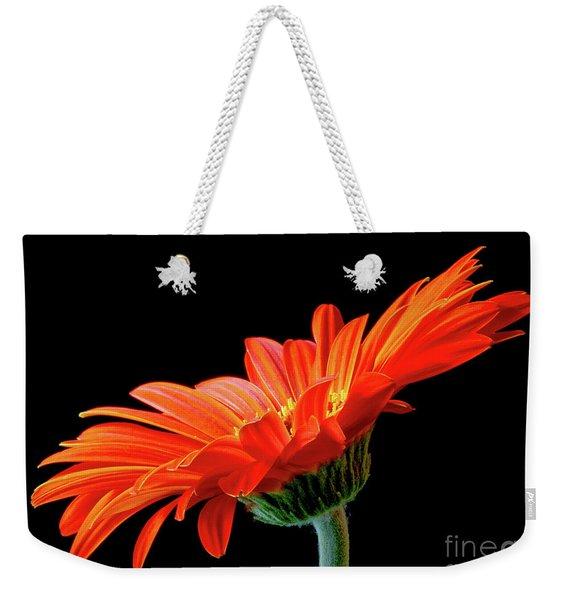 Orange Gerbera On Black Weekender Tote Bag