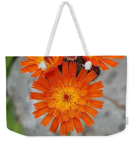Orange Hawkweed Weekender Tote Bag