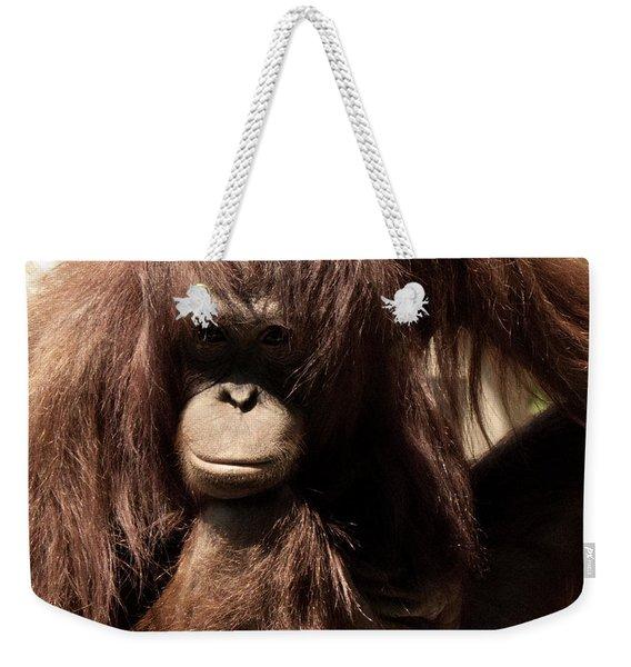 Orangutan Pose Weekender Tote Bag