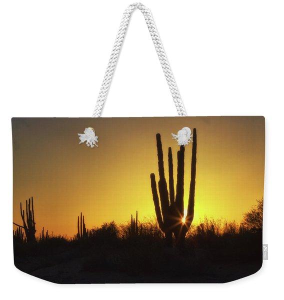 Organ Pipe Cactus Weekender Tote Bag