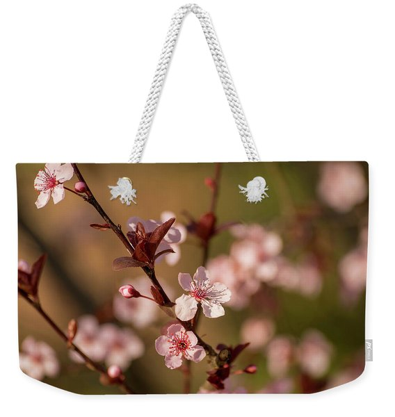 Purple Leaf Sandcherry Blossoms 2 Weekender Tote Bag