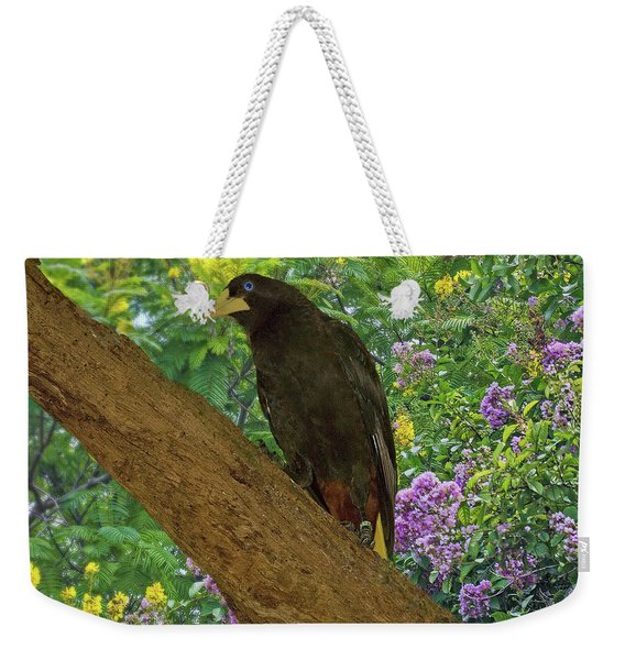 Oropendola Bird On Limb With Floral Background Weekender Tote Bag