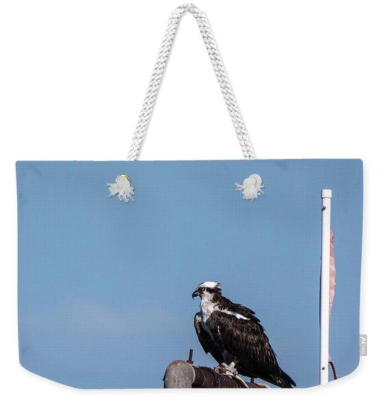 Osprey Having Lunch Weekender Tote Bag