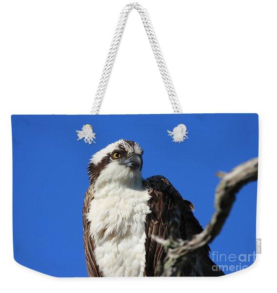 Jacksonville Osprey Weekender Tote Bag