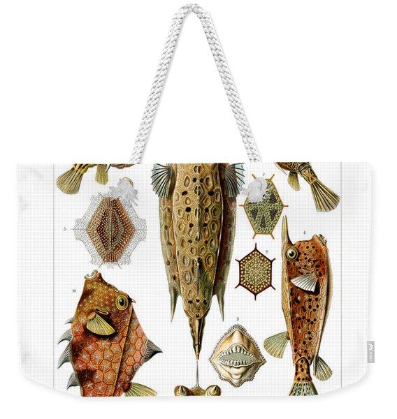 Ostraciontes Weekender Tote Bag