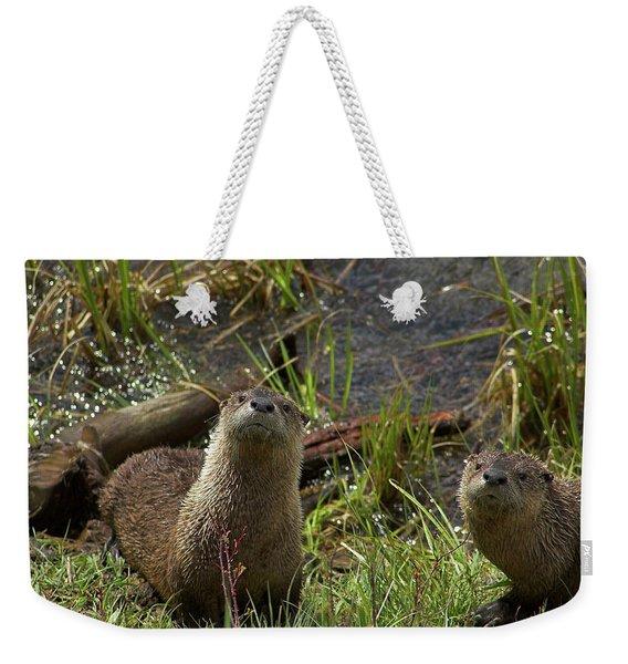 Otters Weekender Tote Bag