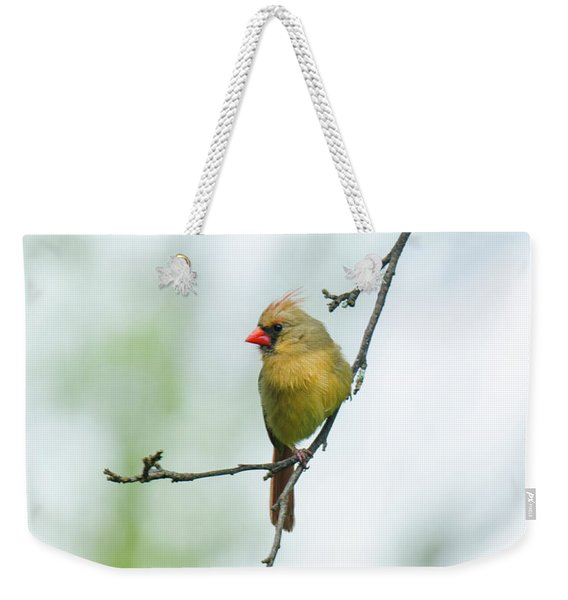 Out On A Limb 2 Weekender Tote Bag