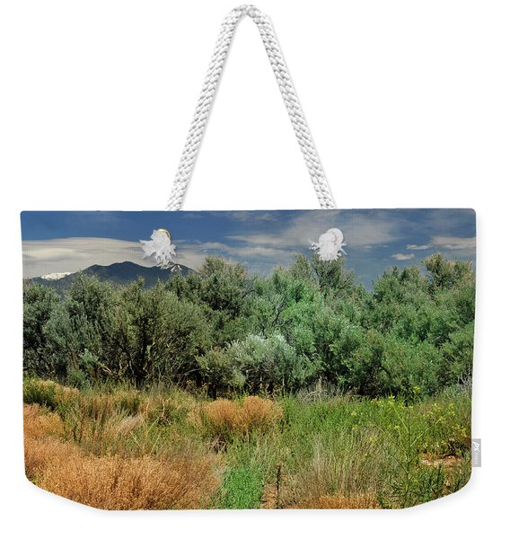 Weekender Tote Bag featuring the photograph Out On The Mesa 1 by Ron Cline