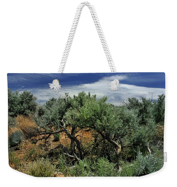 Out On The Mesa 3 Weekender Tote Bag