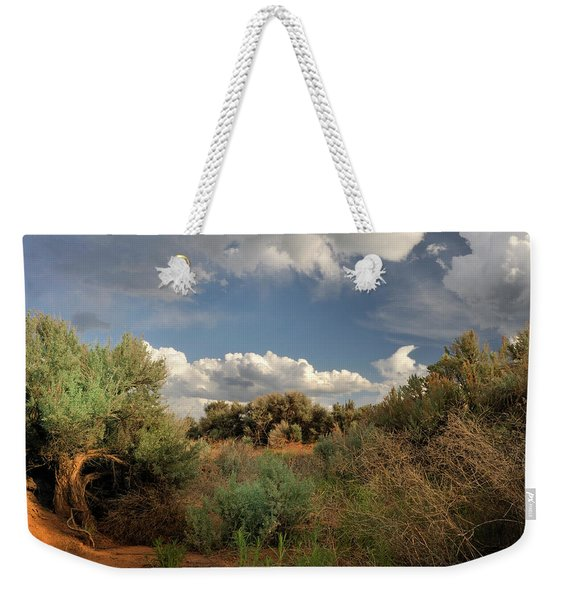 Weekender Tote Bag featuring the photograph Out On The Mesa 4 by Ron Cline