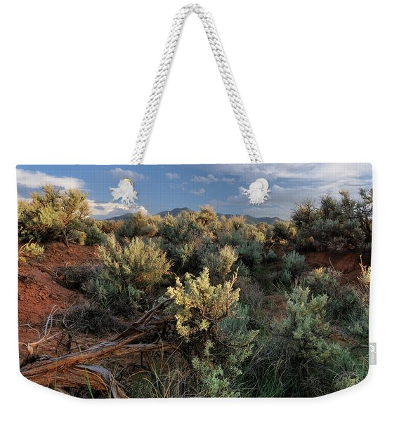 Weekender Tote Bag featuring the photograph Out On The Mesa 7 by Ron Cline