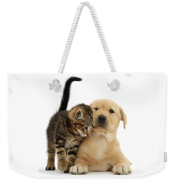 Over Friendly Kitten Weekender Tote Bag