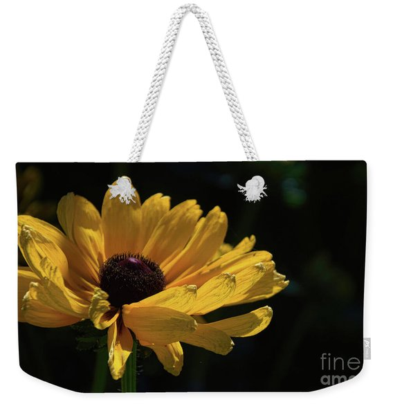 Ox Eye Susan Weekender Tote Bag