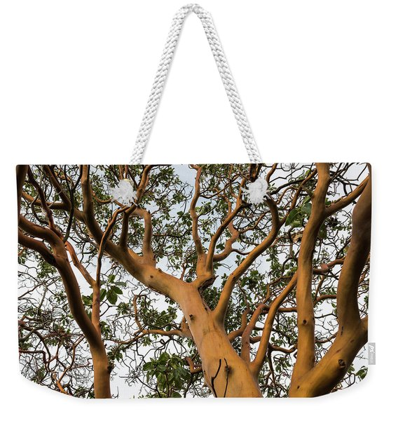 Pacific Madrone Trees Weekender Tote Bag