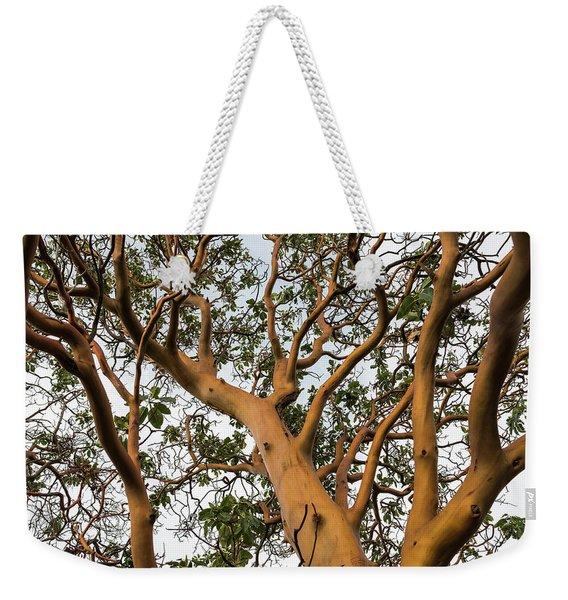Pacific Madrone Trees Weekender Tote Bag