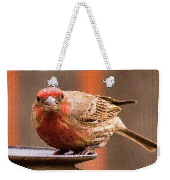 Painted Male Finch Weekender Tote Bag