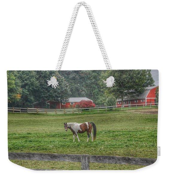 1005 - Painted Pony In Pasture Weekender Tote Bag