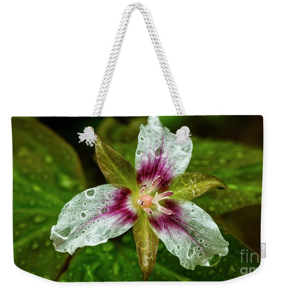 Painted Trillium With Raindrops Weekender Tote Bag