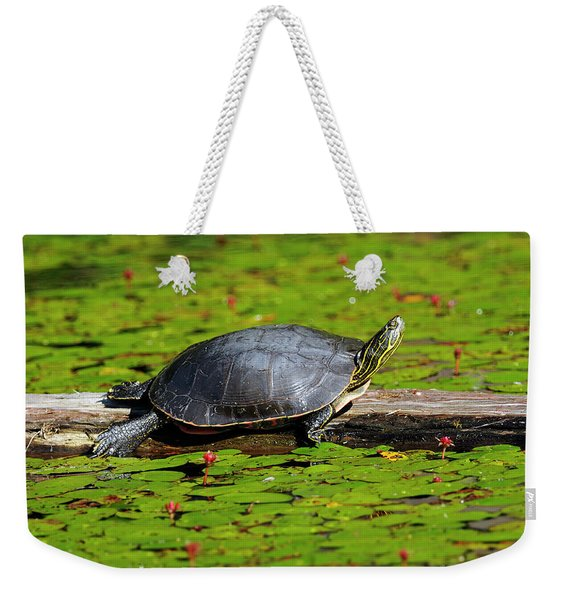 Painted Turtle On Log With Lily Pads Weekender Tote Bag