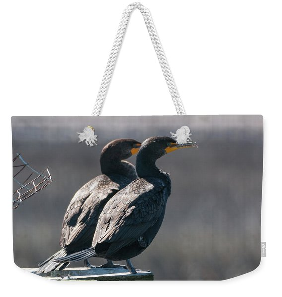 Pair Double-crested Cormorant 3 March 2018 Weekender Tote Bag