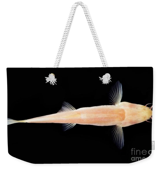Palace Of The Dragon God Cave Loach Weekender Tote Bag