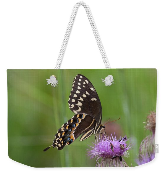 Palamedes Swallowtail And Friends Weekender Tote Bag