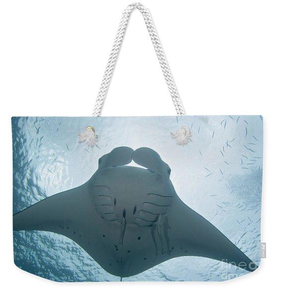Palau, Manta Ray Weekender Tote Bag