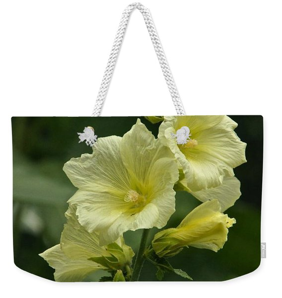 Pale And Lovely Weekender Tote Bag