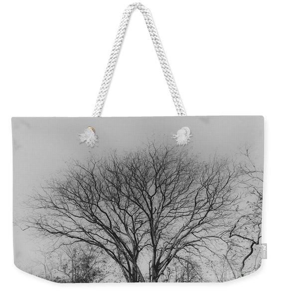 Pale Shades Weekender Tote Bag