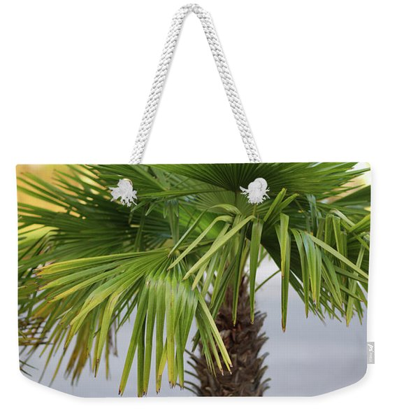 Palm Tree Just There Weekender Tote Bag