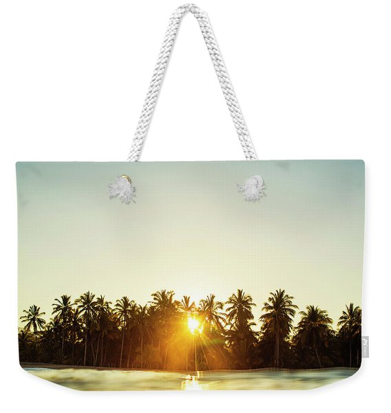 Palms And Rays Weekender Tote Bag