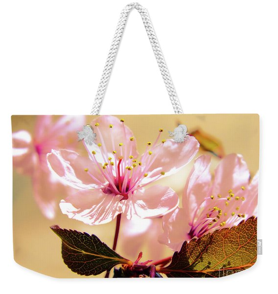 Panoplia Floral Weekender Tote Bag